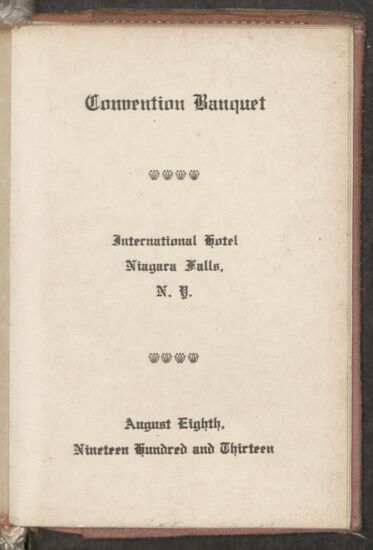 1913 National Convention Image