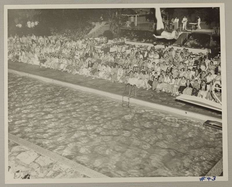 Man Diving Into Water at Convention Pool Show Photograph 2, July 11-16, 1954 (Image)